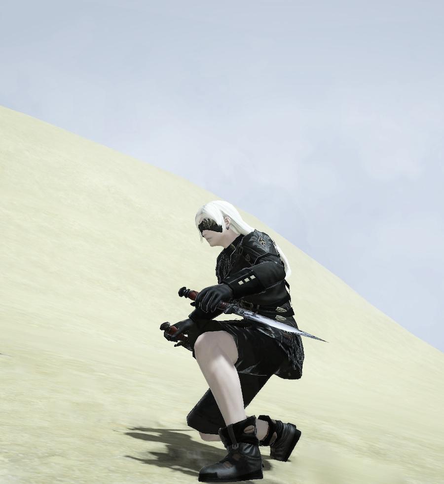 ffxiv砂漠で.jpg